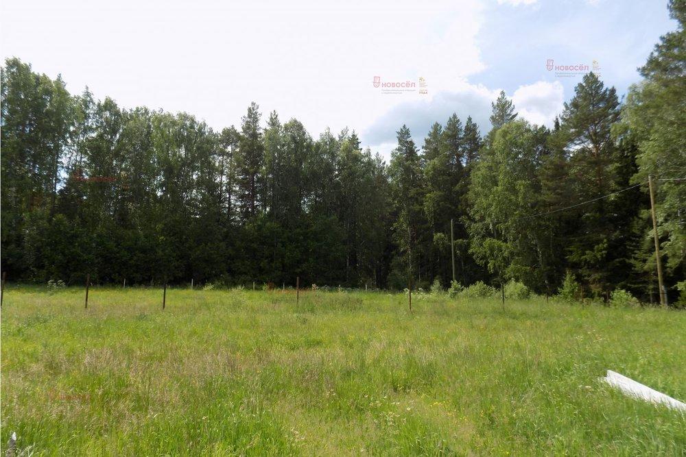 п. Краснояр, ул. Медовая, 6 (городской округ Ревда) - фото земельного участка (1)