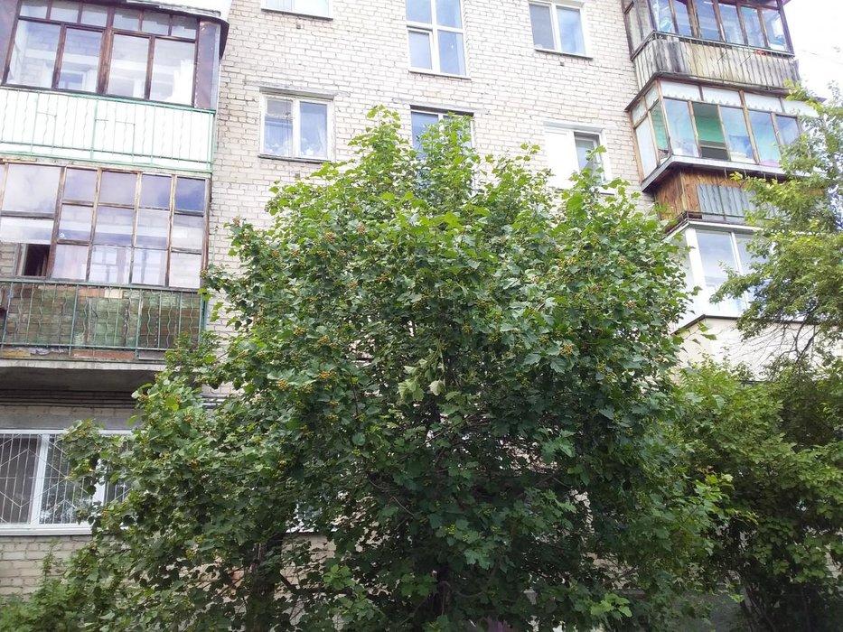 Екатеринбург, ул. Ползунова, 16в (Эльмаш) - фото квартиры (1)