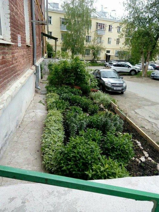Екатеринбург, ул. Коллективный, 3 (Вторчермет) - фото квартиры (1)