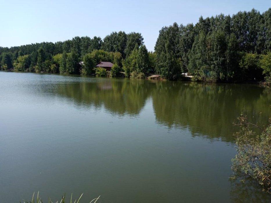Екатеринбург, СНТ Уктус - фото сада (1)