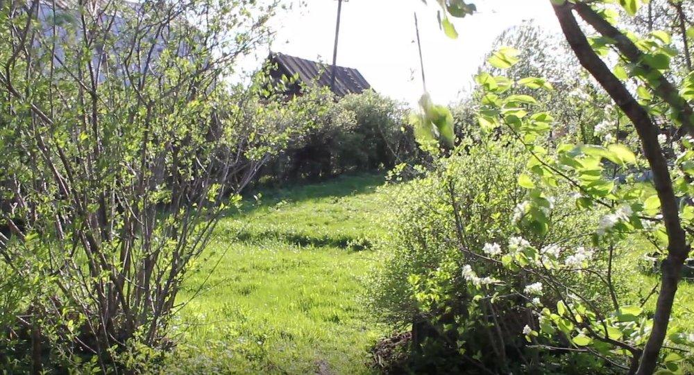 г. Нижний Тагил, ул. Свердлова, 96 (городской округ Город Нижний Тагил) - фото сада (1)