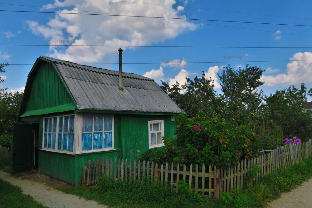 Екатеринбург, СНТ Трамвайщик - фото сада (1)