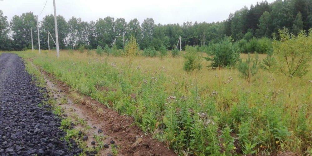 с. Курганово, ул. Елизаветинская (городской округ Полевской) - фото земельного участка (5)