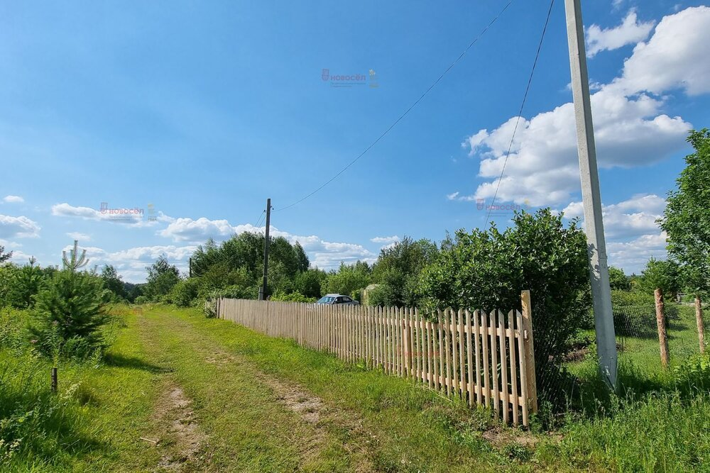 поселок городского типа Белоярский, СНТ УПИ-Баженово (городской округ Белоярский) - фото сада (5)