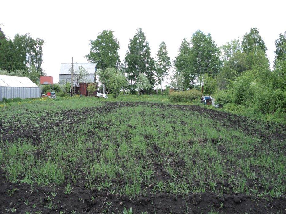 с. Логиново, КС Берёзка (городской округ Белоярский) - фото сада (1)
