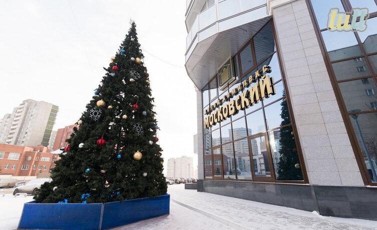Екатеринбург, ул. Московская, 66 (Юго-Западный) - фото квартиры (1)