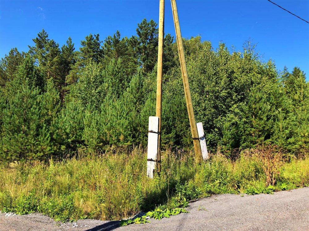 с. Малобрусянское (городской округ Белоярский) - фото земельного участка (8)