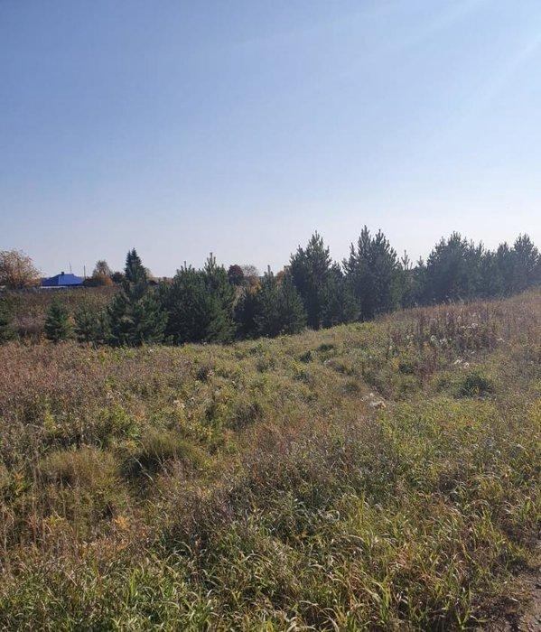 поселок городского типа Белоярский, ул. Благодатная, 33 (городской округ Белоярский) - фото земельного участка (1)