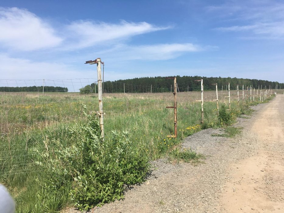 к.п. Гуси (городской округ Белоярский) - фото земельного участка (8)