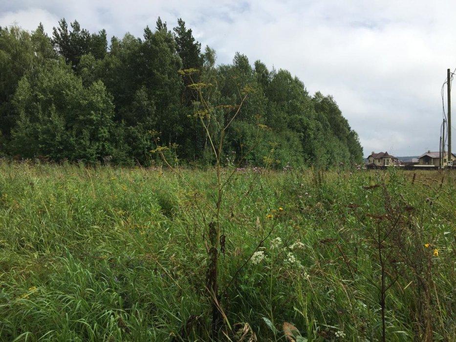 к.п. Белые Росы, ул. Земляничная, 24 (городской округ Полевской, с. Курганово) - фото земельного участка (1)
