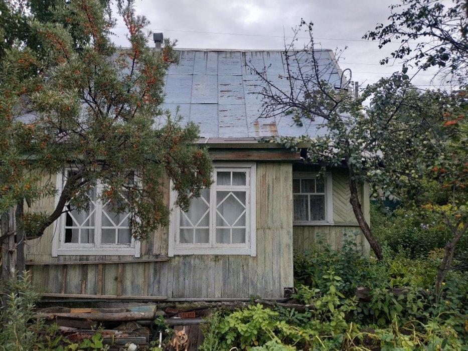 Екатеринбург, СНТ Шинник-2 - фото сада (1)