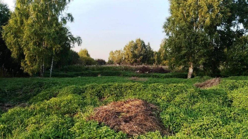 к.п. Благодатный (Чкаловский район) - фото земельного участка (1)