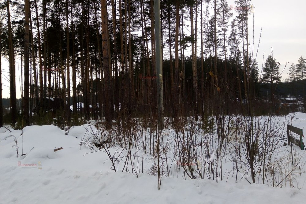 г. Сысерть, ул. Моршанская, 10 (городской округ Сысертский) - фото земельного участка (1)