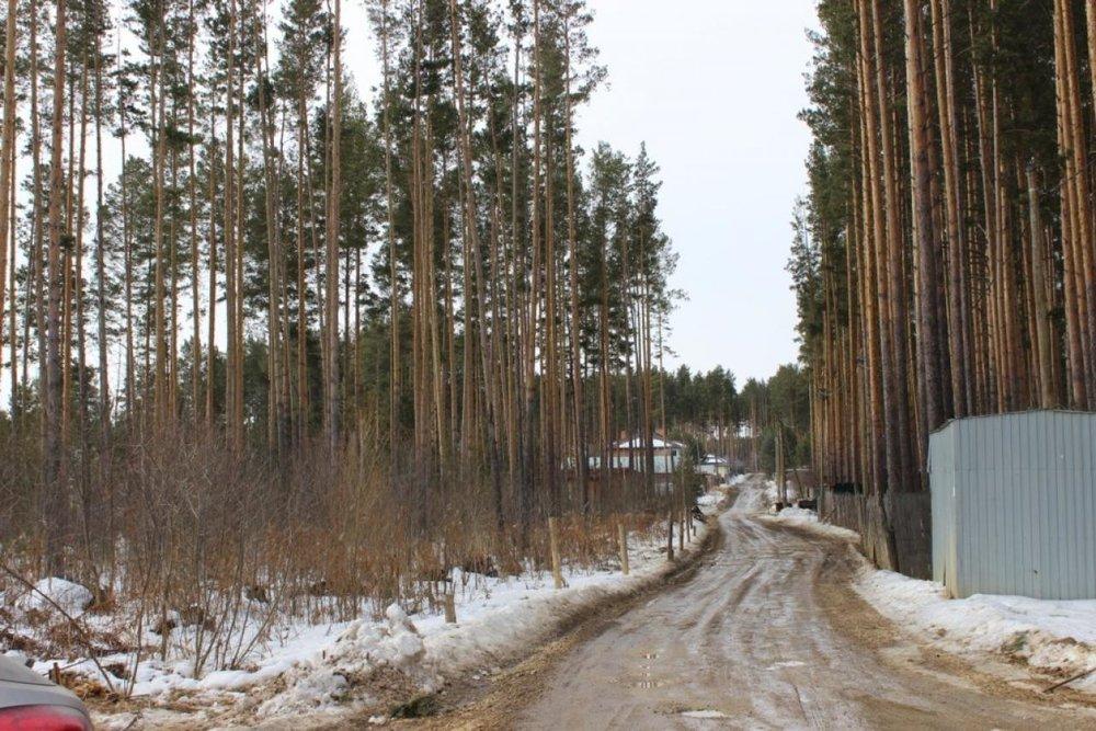 г. Сысерть, ул. Александра Зозули (городской округ Сысертский) - фото земельного участка (1)
