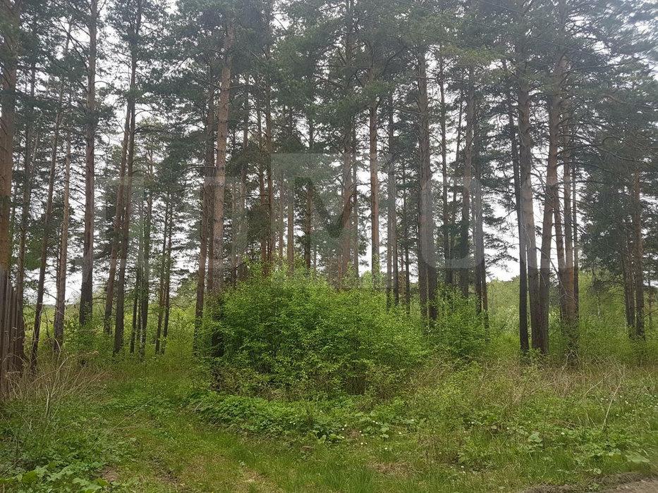 с. Кунгурка (городской округ Ревда) - фото земельного участка (1)