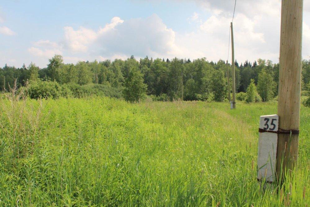 с. Мостовское, ул. Еловая, 16 (городской округ Верхняя Пышма) - фото земельного участка (1)