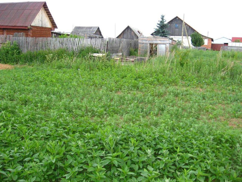 с. Мостовское, ул. Советская, 76А (городской округ Верхняя Пышма) - фото земельного участка (3)