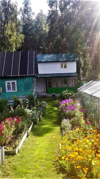 Екатеринбург, СНТ Росинка, уч. 62 - фото сада (1)
