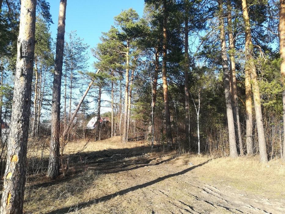 Екатеринбург, КП Усадьба-лес (Кольцово) - фото земельного участка (1)