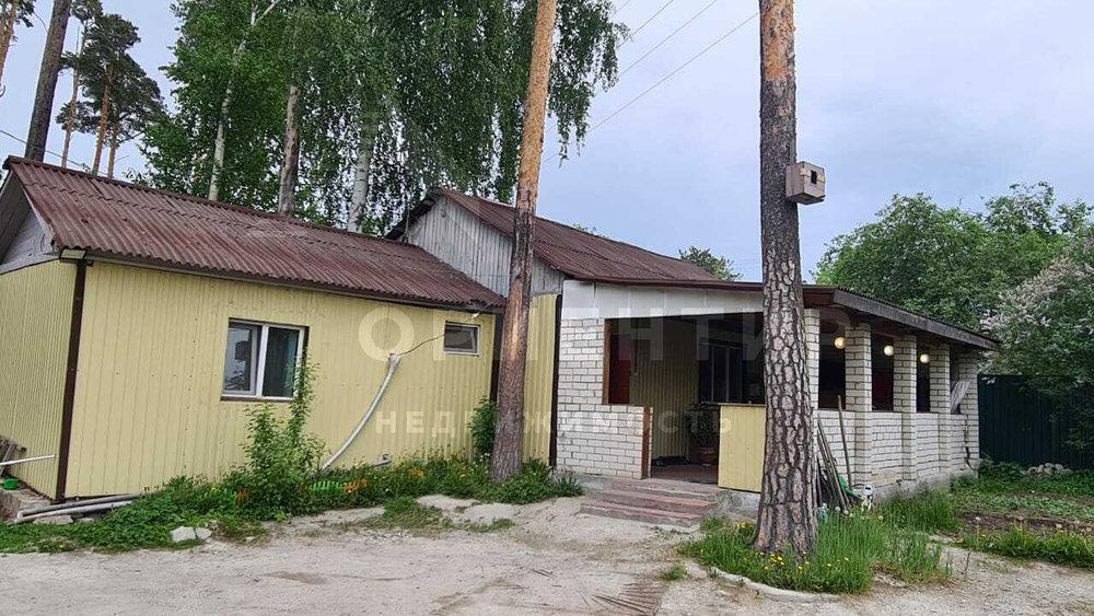 Екатеринбург, СНТ Шарташское, уч. 47 - фото сада (2)
