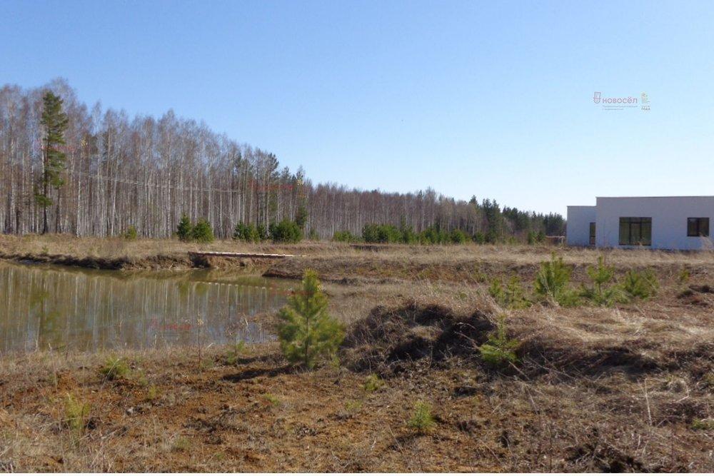 к.п. Лебедево (городской округ Верхняя Пышма) - фото земельного участка (8)