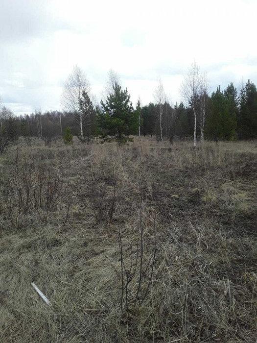 п. Бобровский (городской округ Сысертский) - фото земельного участка (3)