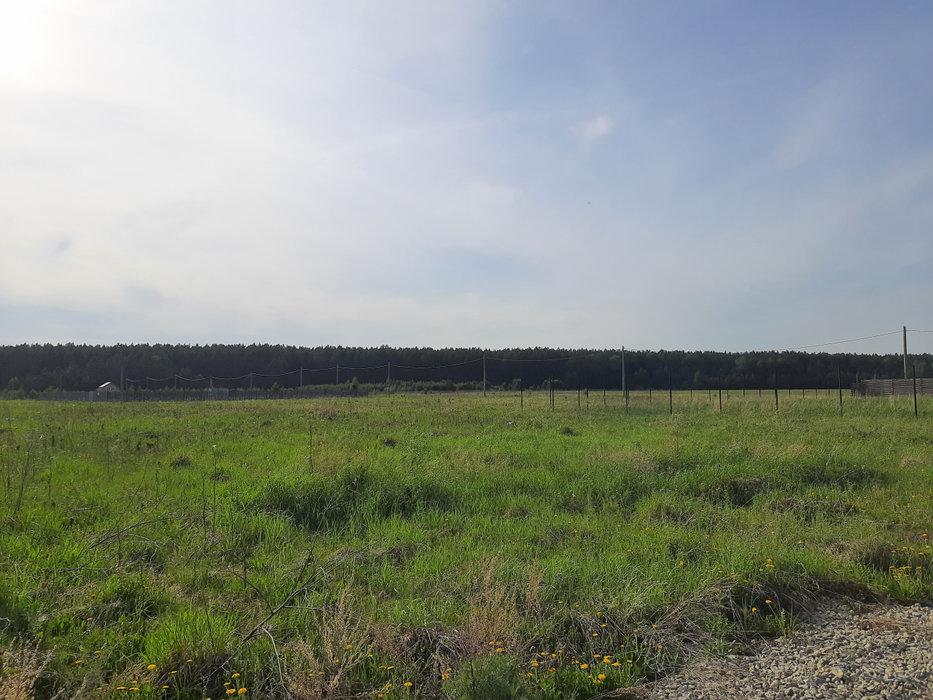 д. Головырина (городской округ Белоярский) - фото земельного участка (1)
