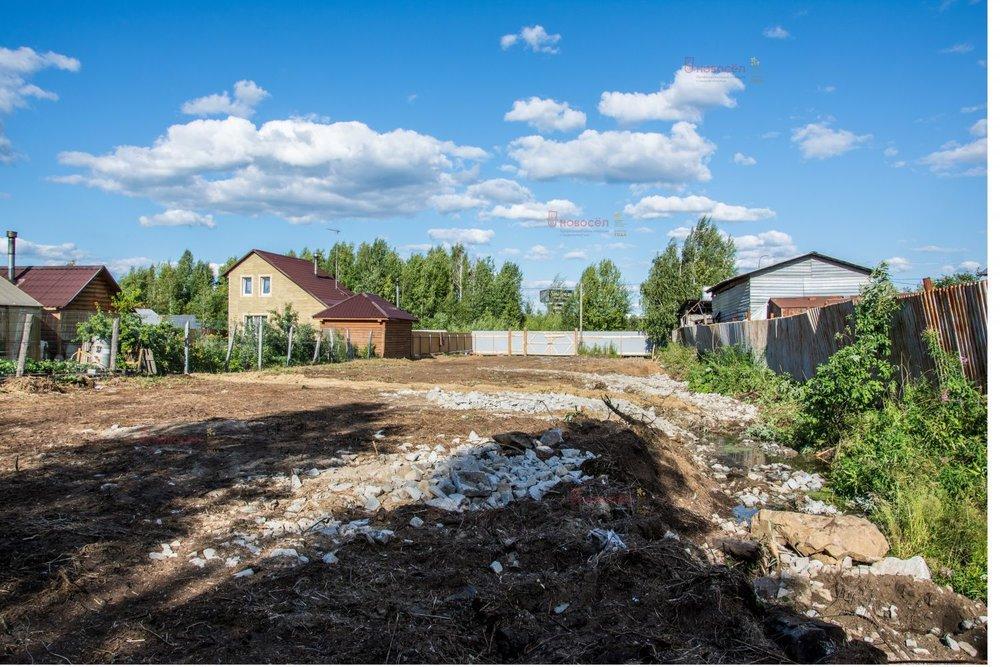 Екатеринбург, СНТ Черемушки-2, уч. 34 (Химмаш) - фото сада (6)
