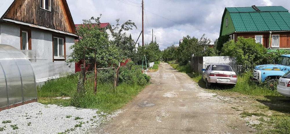 Екатеринбург, к/с Росинка (Палкинский торфяник) - фото сада (1)