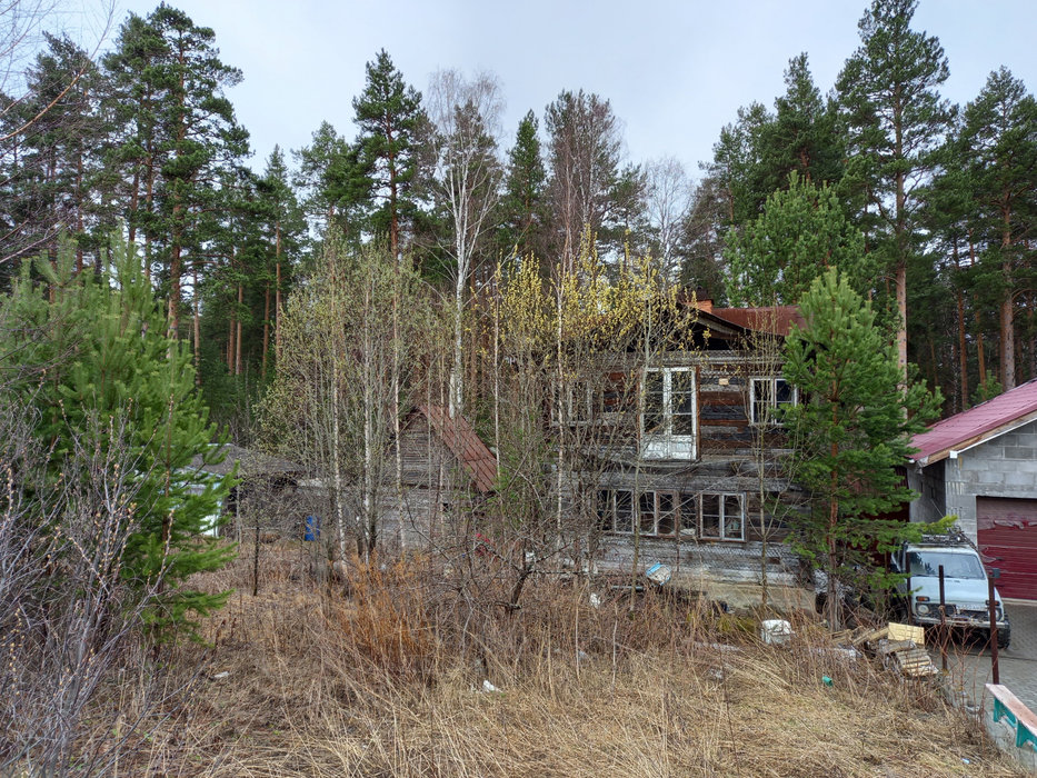 Екатеринбург, СНТ Росинка, уч. 64 - фото сада (2)