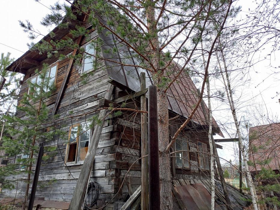 Екатеринбург, СНТ Росинка, уч. 64 - фото сада (4)