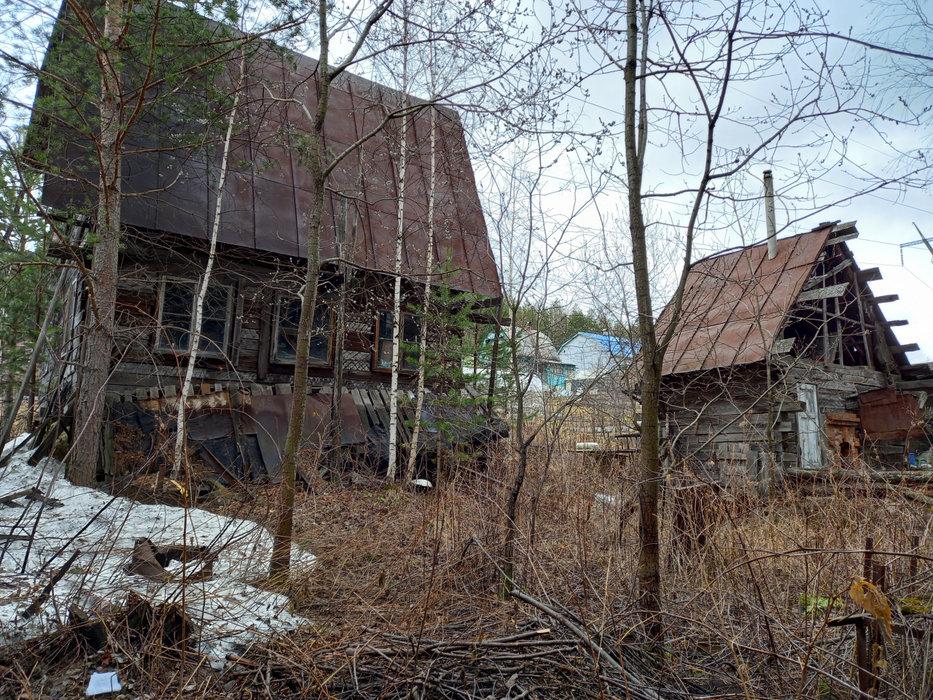 Екатеринбург, СНТ Росинка, уч. 64 - фото сада (6)