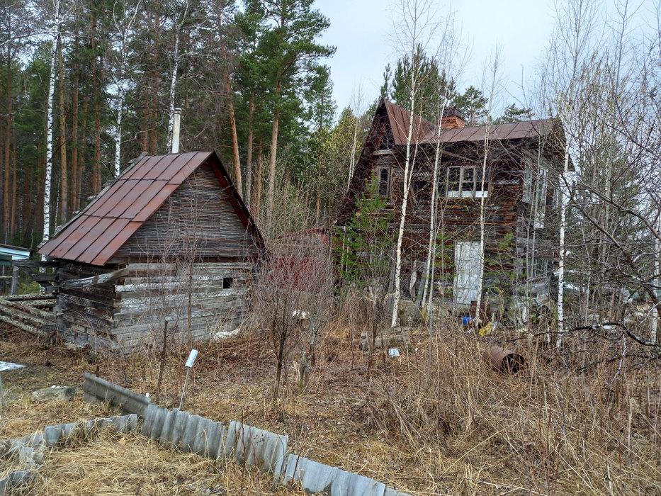 Екатеринбург, СНТ Росинка, уч. 64 - фото сада (7)