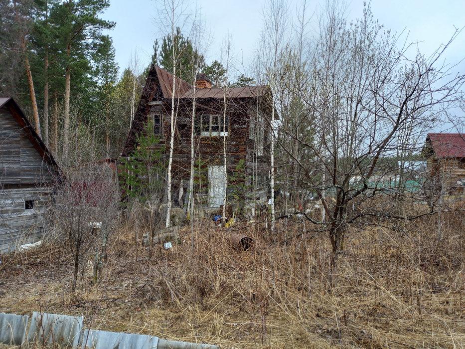 Екатеринбург, СНТ Росинка, уч. 64 - фото сада (8)