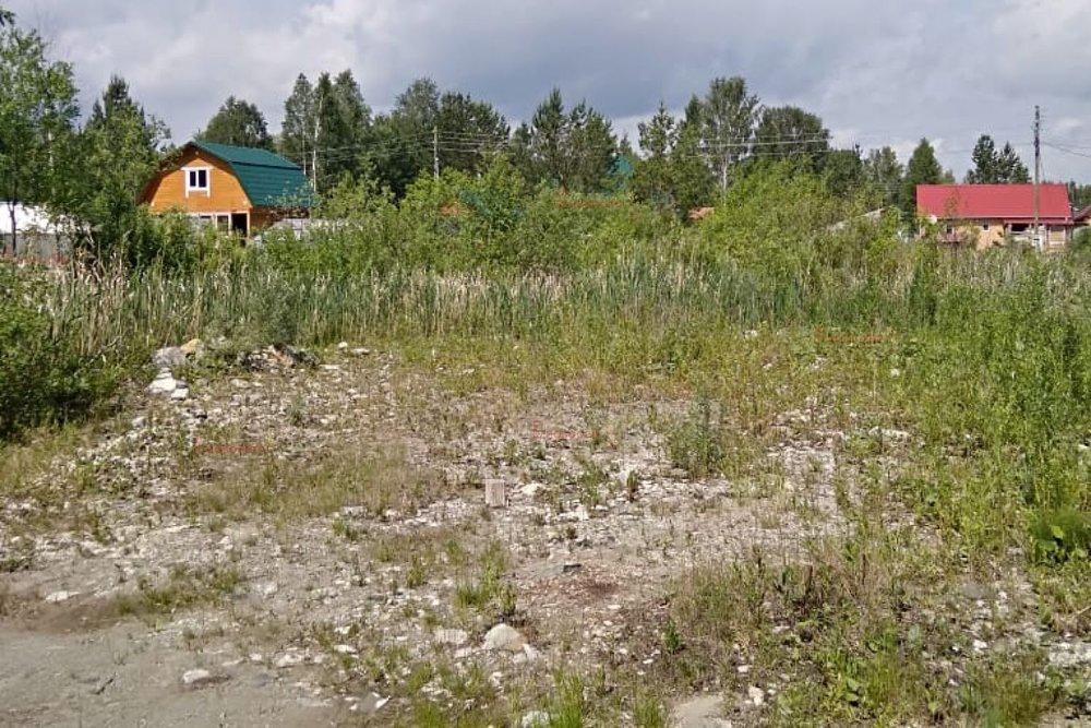 Екатеринбург, СНТ Наладчик, уч. 28 (Палкинский торфяник) - фото сада (5)