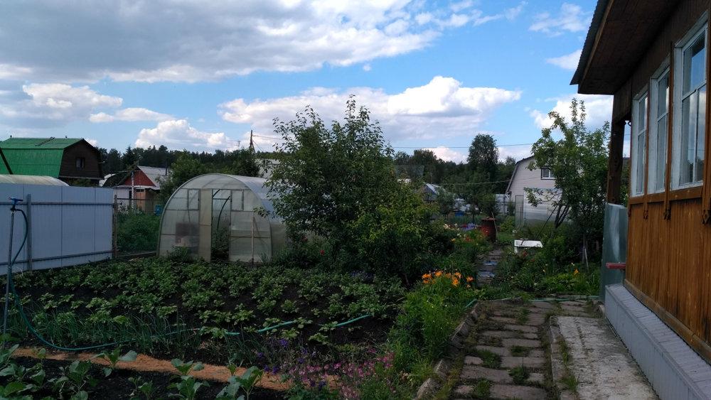 Екатеринбург, СТ Зеленая поляна - фото сада (4)