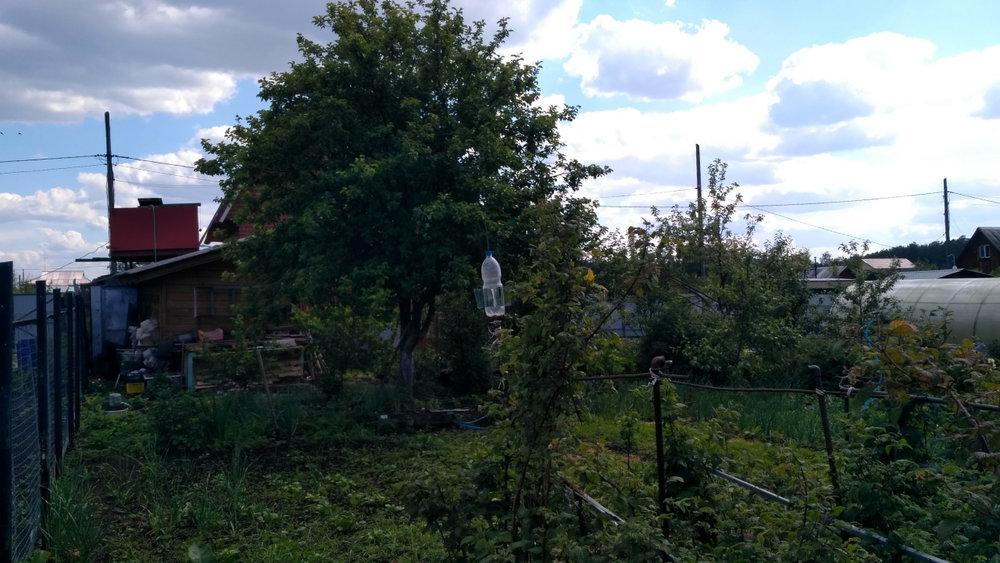 Екатеринбург, СТ Зеленая поляна - фото сада (6)