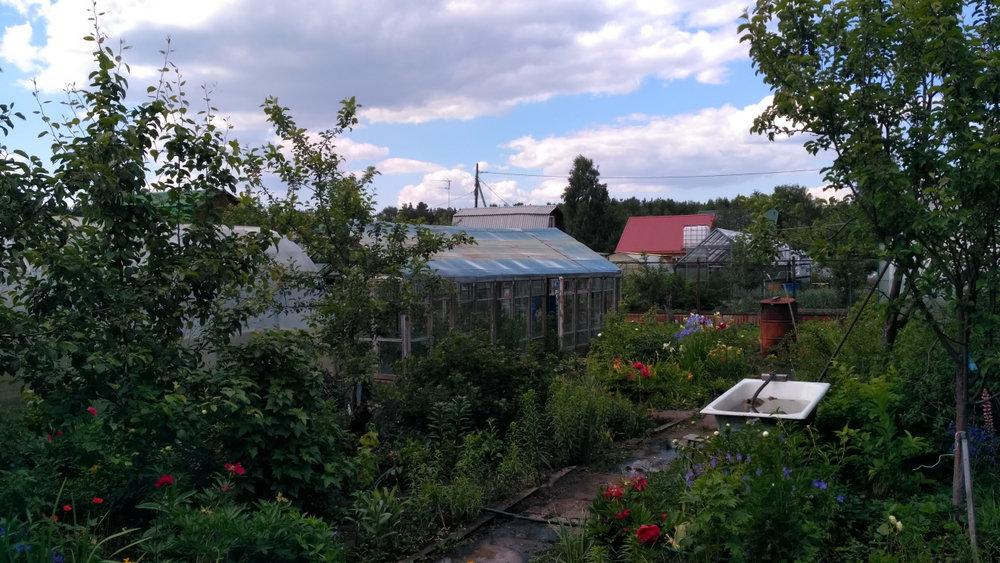 Екатеринбург, СТ Зеленая поляна - фото сада (7)