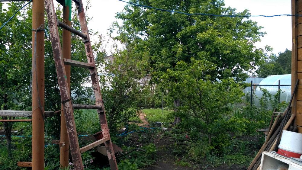 Екатеринбург, СТ Зеленая поляна - фото сада (8)