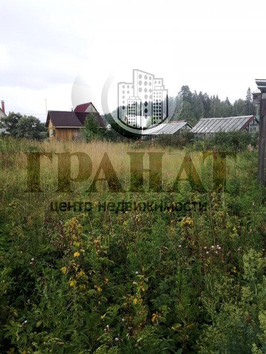 г. Ревда, СНТ №6 РММЗ (городской округ Ревда) - фото сада (1)