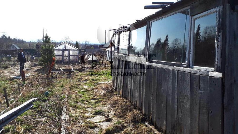 г. Ревда, СНТ Гусевка (городской округ Ревда) - фото сада (2)