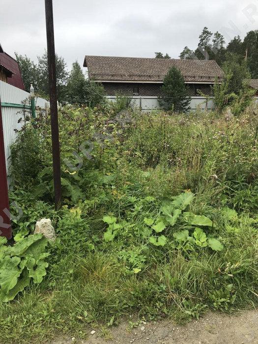 Екатеринбург, к/с Викторя, уч. 108 (Широкая речка) - фото сада (1)