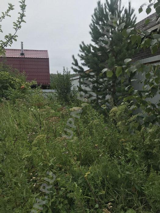 Екатеринбург, к/с Викторя, уч. 108 (Широкая речка) - фото сада (6)