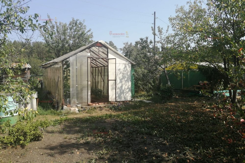 г. Заречный, СНТ Кировский, уч. 310 (городской округ Заречный) - фото сада (4)