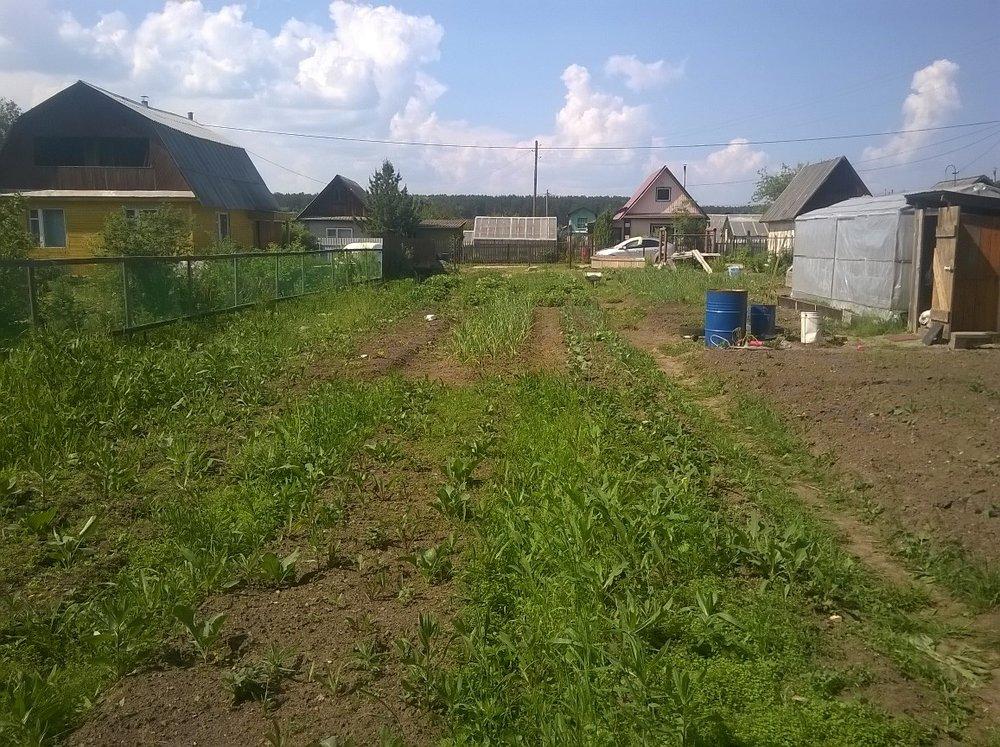 г. Заречный, Кировский , уч. 347 (городской округ Заречный) - фото сада (1)