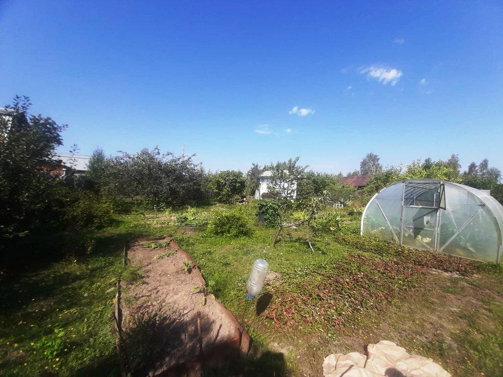 Екатеринбург, к/с Марс, ул. Анонасовая, 48 (Широкая речка) - фото сада (5)