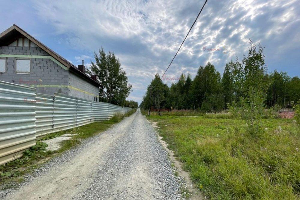 Екатеринбург, ДКС Лесной, уч. 8 (Широкая речка) - фото сада (5)