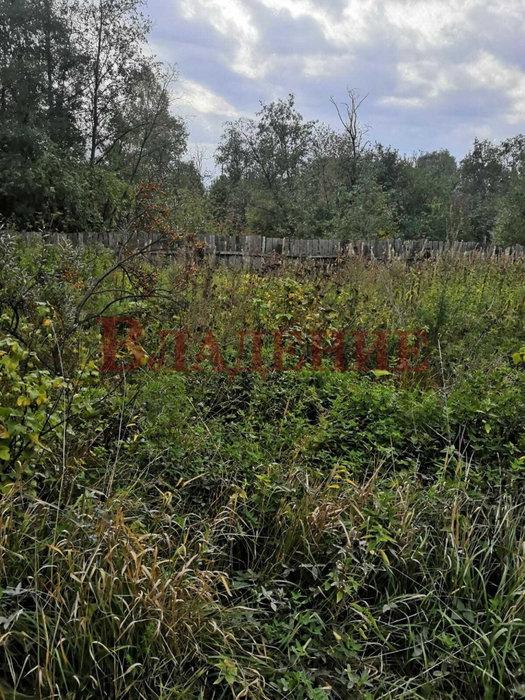 г. Нижний Тагил (городской округ Нижний Тагил) - фото сада (1)