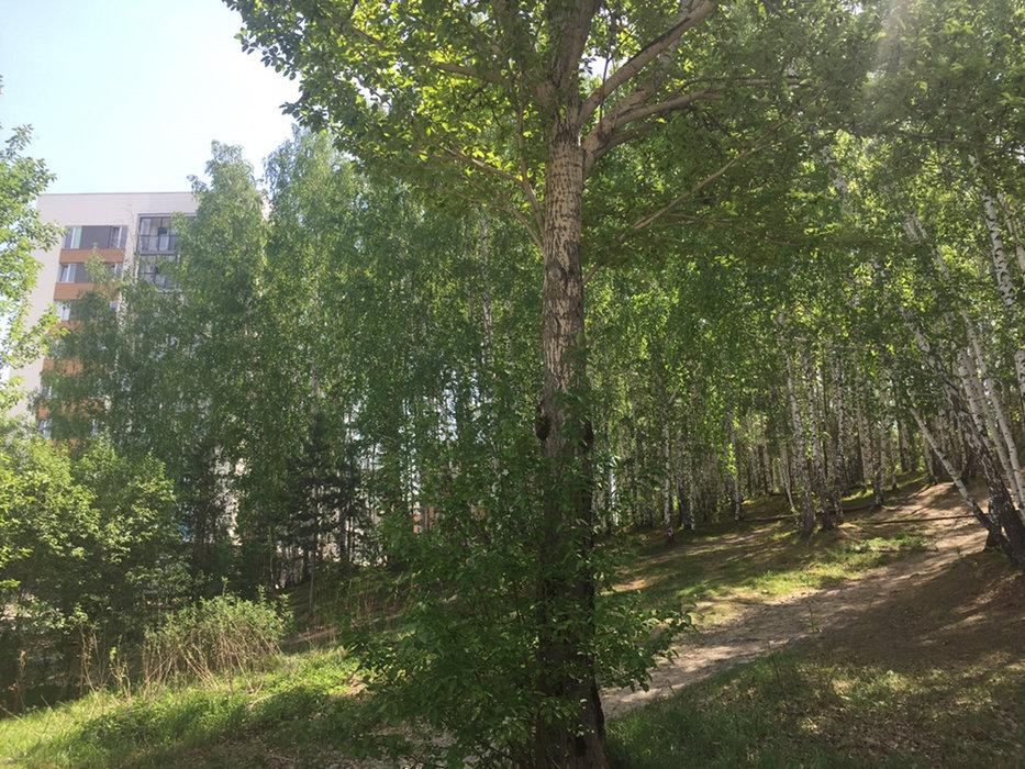Екатеринбург, ул. Прониной, 27 (Уктус) - фото квартиры (4)