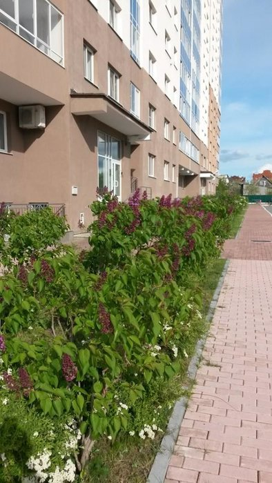 Екатеринбург, ул. Громова, 28 (Юго-Западный) - фото квартиры (3)